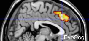 cropped-neuroaesthetics
